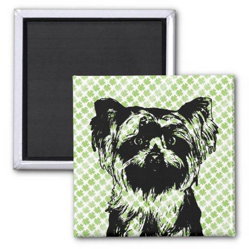 St Patricks - silueta de Yorkshire Terrier Imán De Frigorífico
