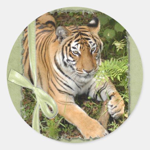 St. Patrick's Tiger Sticker