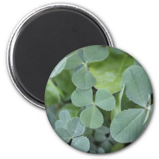 St Pattys Day Clover Mix 2 Inch Round Magnet