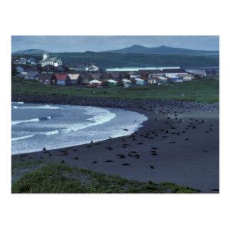 St. Paul and Zolotoi Beach, Pribilofs Postcard