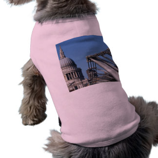 St Pauls Cathedral And The Millenium Bridge T-Shirt