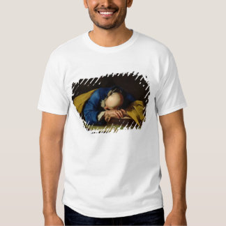 St. Peter or St. Jerome Sleeping, c.1735-39 T-shirt