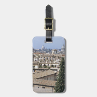 St Peters Basilica 2 Luggage Tag