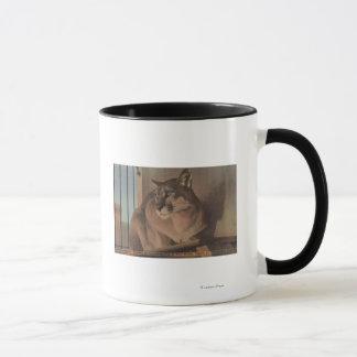 St. Petersburg, Florida - Picture Of Florida Mug