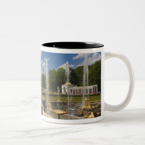 St Petersburg, fuentes magníficas 6 de la cascada Taza De Dos Tonos