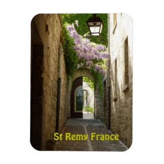 St Remy France Magnet