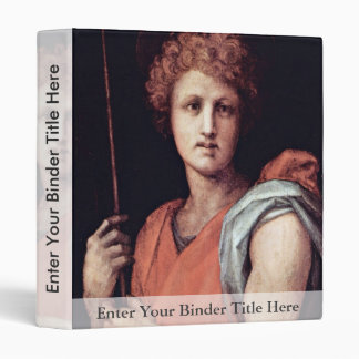 St. Sebastian By Pontormo Jacopo (Best Quality) Vinyl Binder