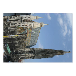 St. Stephen's Cathedral Domkirche St. Stephan Large Business Card