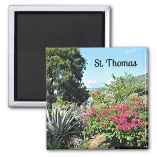 St. Thomas 2 Inch Square Magnet