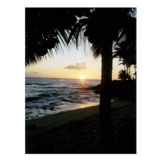 St Thomas Beach Sunset Postcard