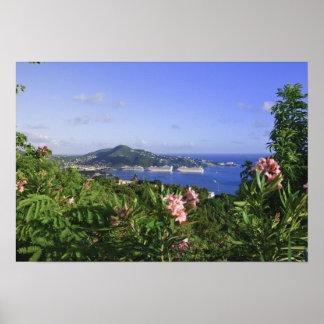 St Thomas, Islas Vírgenes de los E.E.U.U. Charlott Póster