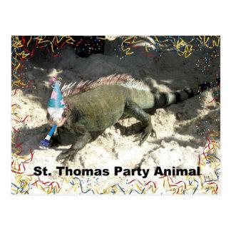 St. Thomas Party Animal! Postcard