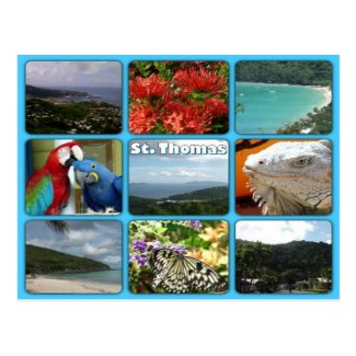 St. Thomas Photo Collage Postcard