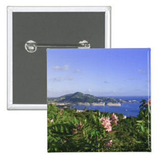 St. Thomas, US Virgin Islands. Charlotte Button