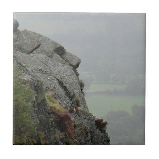 St Tydecho's Head Overlooking the Dyfi Valley Tiles