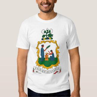 St. Vincent y camiseta del escudo de armas de las Remera