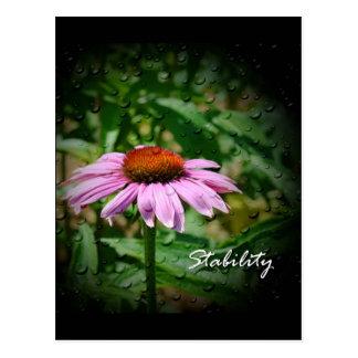Stability Postcard