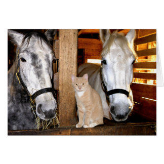 """""""Stable Buds"""" Greeting Card"""