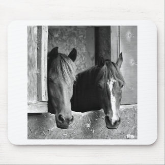 Stable mates mouse pad