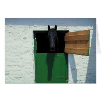 Stabled Horse with French Door Cards