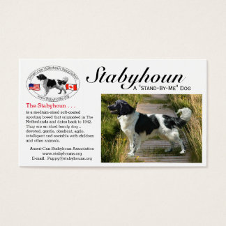 "Stabyhoun ""business"" cards Double-Sided standard b"