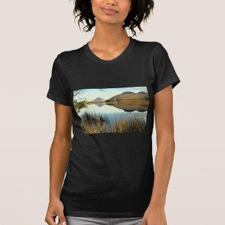 Stac Polly y Cul Beas Camisetas