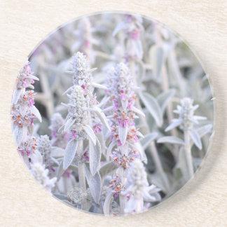 Stachys Byzantina Flowers Drink Coaster