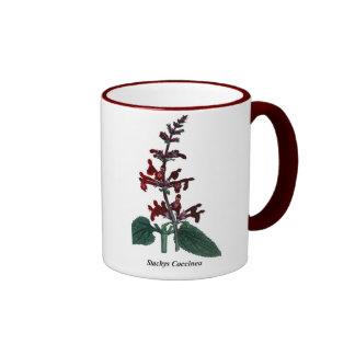 Stachys Coccinea Ringer Coffee Mug