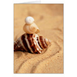 Stack of Conch Shells Greeting Card