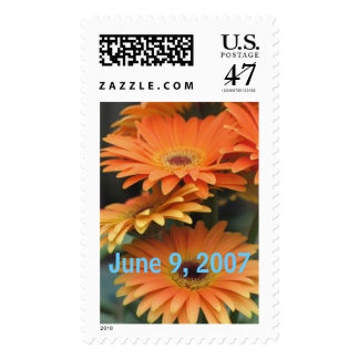 stacked-daisies, June 9, 2007 Postage