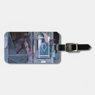 Stacked Deck Luggage Tag
