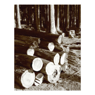 Stacked logs flyer