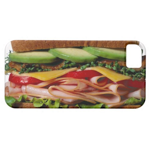Stacked sandwich iPhone 5 covers