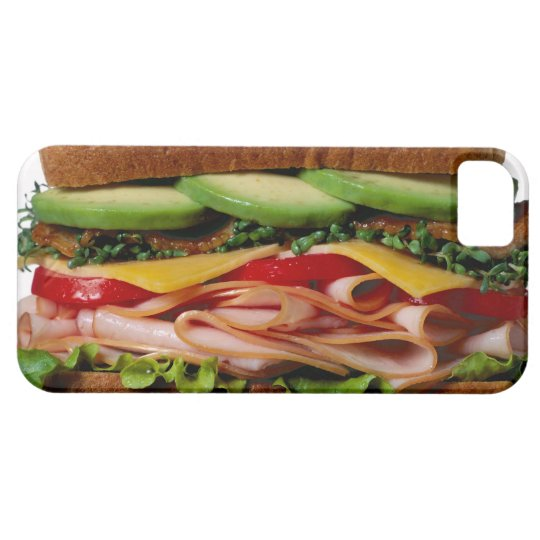 Stacked sandwich iPhone SE/5/5s case