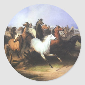 Stadnina Classic Round Sticker