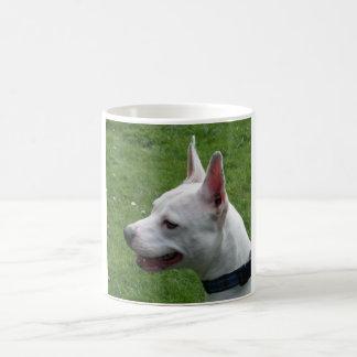 Staffordshire blanco hermoso bull terrier taza clásica