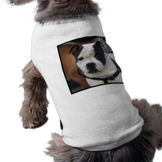 Staffordshire Bull Terrier Doggie T-shirt