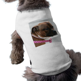 Staffordshire bull terrier dog shirt