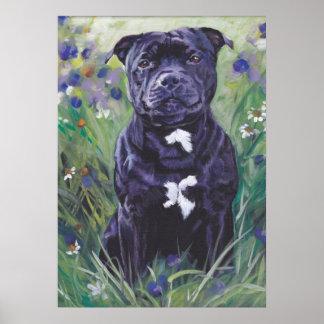 Staffordshire Bull Terrier Fine Art Portrait Print