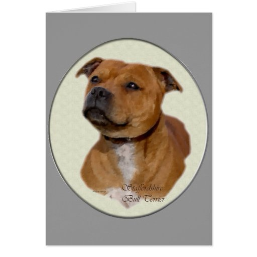 Staffordshire Bull Terrier Gifts Card