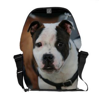 Staffordshire bull terrier messenger bags