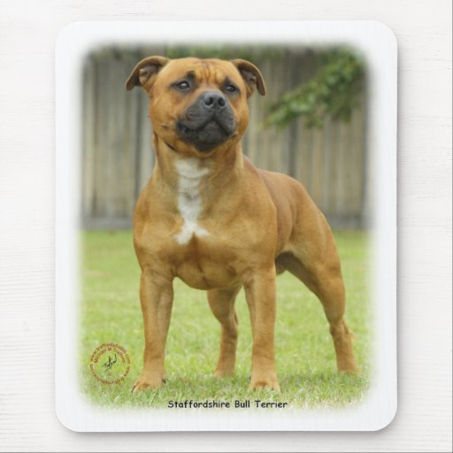 Staffordshire Bull Terrier Mouse Mats