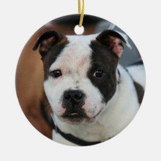 Staffordshire Bull Terrier ornament