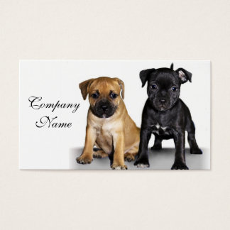 Staffordshire bull terrier puppies business card