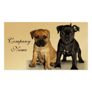 Staffordshire bull terrier puppies business cards