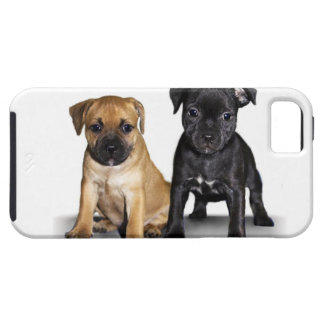 Staffordshire bull terrier puppies iPhone SE/5/5s case