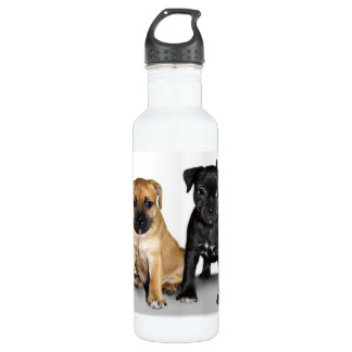 Staffordshire bull terrier puppies stainless steel water bottle