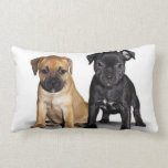 Staffordshire bull terrier puppies throw pillows