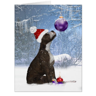 Staffordshire bull terrier puppy, holiday Big Card