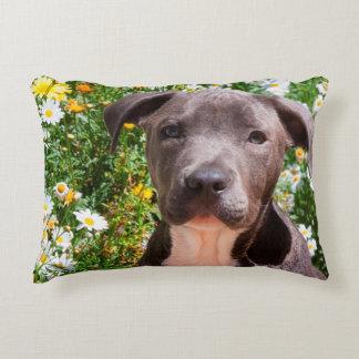 Staffordshire Bull Terrier puppy portrait Decorative Pillow